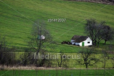 Green Field With Farm House In Background At Countryside Stock Photo