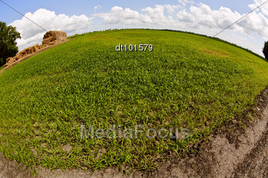Green Field Under The Daylight. Country Landscape Stock Photo