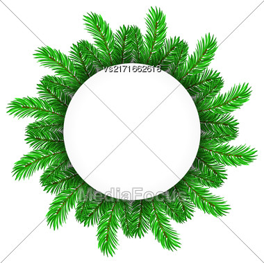 Green Fir Circle Frame Isolated On White Background Stock Photo
