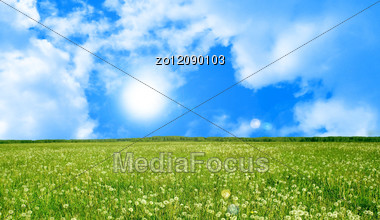 Green Glade In Summer Day . Stock Photo