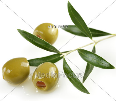 Green Olives With A Olive Tree Branch Stock Photo