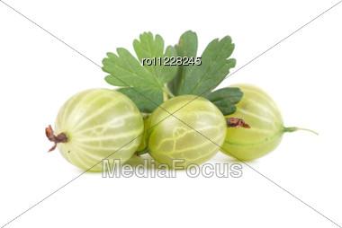 Green Ripe Gooseberries Isolated Stock Photo