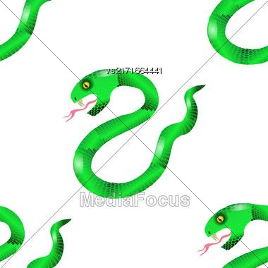 Green Snake Seamless Background. Animal Pattern. Attack Crawling Danger Predator Stock Photo
