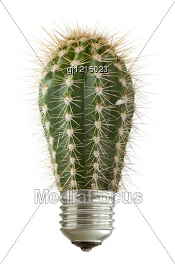 Green Spiky Cactus Growing Out Of A Bulb Stock Photo