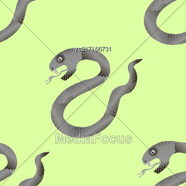 Grey Snake Seamless Background. Animal Pattern. Attack Crawling Danger Predator Stock Photo