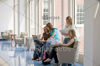 Group of College Girls Studying Stock Photo