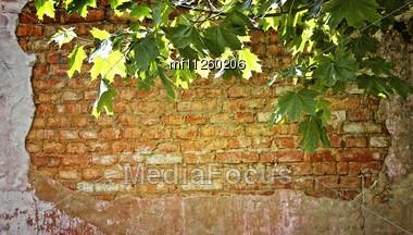 Grunge Bricks Wall Background Stock Photo