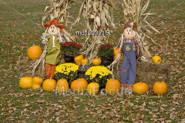 Halloween Display Minnesota Pumpkin Scarecrow Corn Maize Stock Photo