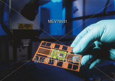 Hand Holding Board With Microchips Stock Photo