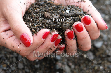 Handful Of Soil Held By Woman's Hands Stock Photo