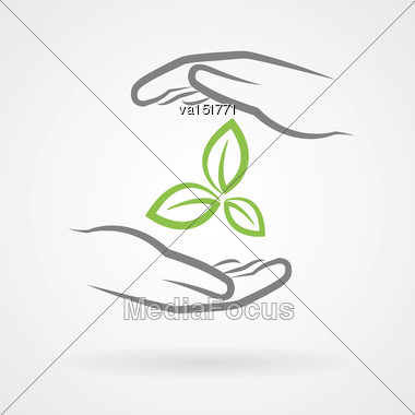Hands With Green Leaves Icon As Environmental Protection Concept Vector Illustration Stock Photo