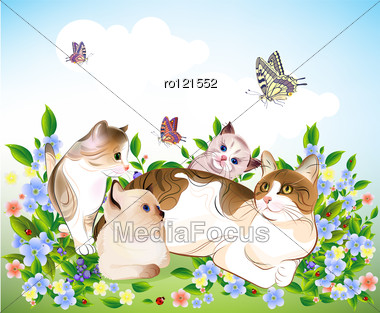 Happy ?ats Family. Cat And Kittens On The Meadow. Stock Photo