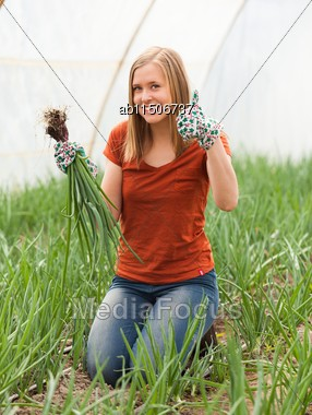 Happy Young Gardener At The Glasshouse With A Bunch Of Green Onions Stock Photo