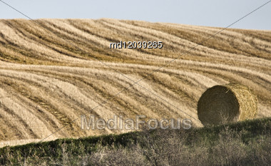 Hay Bale Against A Newly Swathed Field Stock Photo