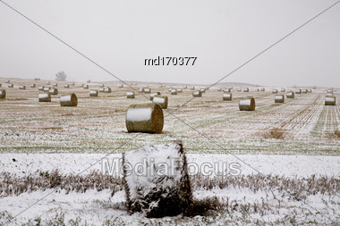 Hay Bales In Winter In Saskatchewan Canada Stock Photo