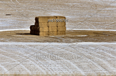 Hay In Field Winter In Alberta Canada Stock Photo