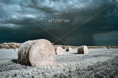 Hay Rolls Summer Infrared Surreal Landscape Stock Photo