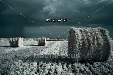 Hay Rolls Summer Infrared Surreal Landscape With Rainy Clouds Stock Photo