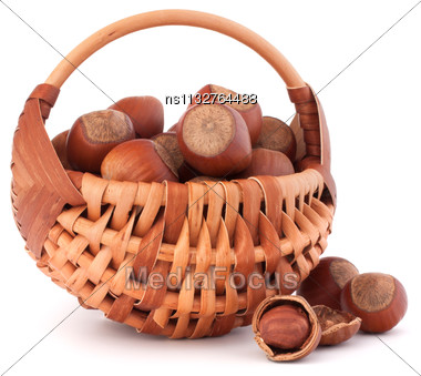 Hazelnuts In Wicker Basket Isolated On White Background Stock Photo