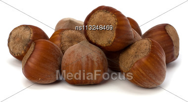 Hazelnuts Isolated On White Background Stock Photo