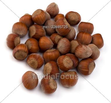 Hazelnuts Isolated On White Background Stock Photo