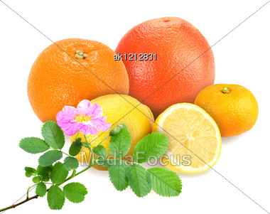 Heap Of Fresh Citrus Fruits With Branch Of Dog-rose. Placed On White Background. Close-up. Studio Photography. Stock Photo