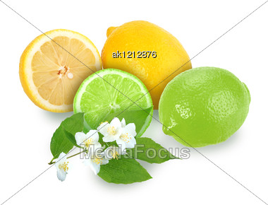 Heap Of Fresh Citrus Fruits With Branch Of Jasmine. Placed On White Background. Close-up. Studio Photography. Stock Photo