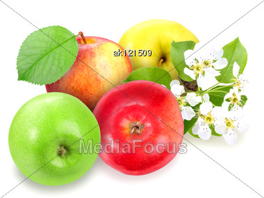 Heap Of Fresh Motley Apples With Green Leaf And Flowers. Placed On White Background. Close-up. Studio Photography. Stock Photo