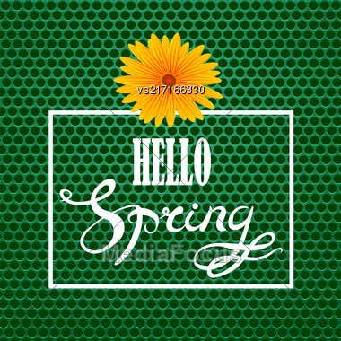 Hello Spring Lettering Design.Green Banner With A Textured Carbon Grid Background And Text In Square Frame Stock Photo