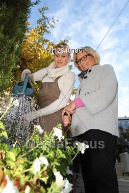 Help In The Garden Stock Photo