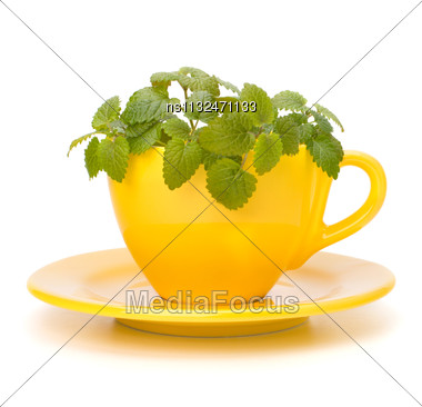 Herbal Peppermint Tea Cup Isolated On White Background. Alternative Medicine Concept Stock Photo