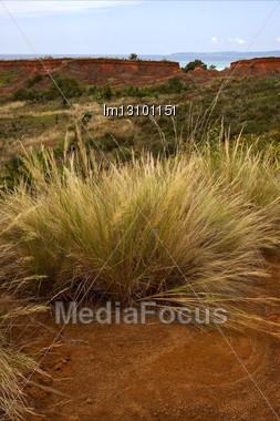 Hill Bush Plant Lagoon And Coastline In Madagascar Nosy Iranja Stock Photo
