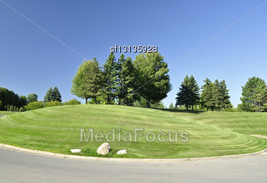 Hill With Trees Stock Photo