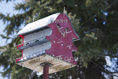 Home Made Wooden Bird House On A Pole. Stock Photo