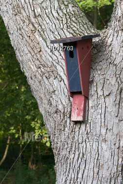 Home Made Wooden Bird House On A Tree Stock Photo
