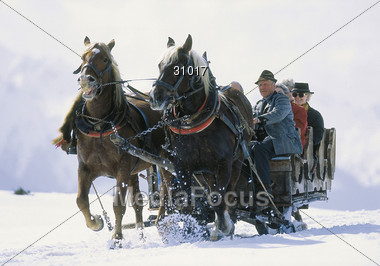 Horse Carriage Ride in the Snow Stock Photo