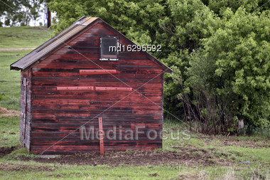 Horse In Sasklatchewan Summer Red Building Canada Stock Photo