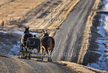 Horses And Carriage In Saskatchewan Canada Rural Stock Photo