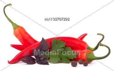 Hot Red Chili Or Chilli Pepper And Aromatic Herbs Leaves Still Life Isolated On White Background Cutout Stock Photo