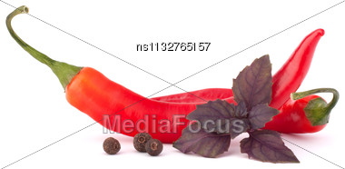 Hot Red Chili Or Chilli Pepper And Basil Leaves Still Life Isolated On White Background Cutout Stock Photo
