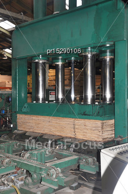 Hydraulic Press Compresses Sheets Of Veneer Into Plywood Stock Photo