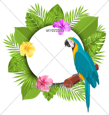 Illustration Beautiful Card With Parrot Ara, Colorful Flowers Blossom And Tropical Leaves - Vector Stock Photo