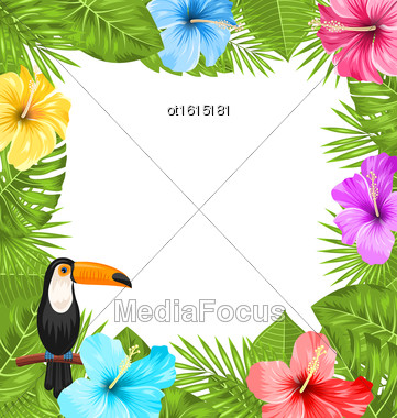 Illustration Exotic Jungle Frame With Toucan Bird, Colorful Hibiscus Flowers Blossom And Tropical Leaves, Copy Space For Your Text - Vector Stock Photo