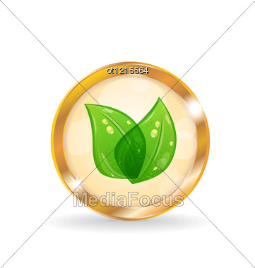 Golden Circle Label With Eco Leaves Stock Photo