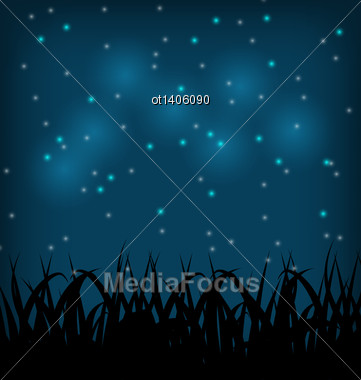 Illustration Night Sky With Grass Field - Vector Stock Photo