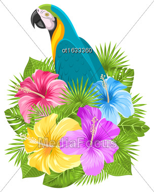 Illustration Parrot Ara, Colorful Hibiscus Flowers Blossom And Tropical Leaves, Isolated On White Background - Vector Stock Photo