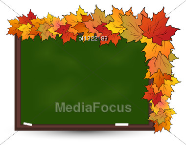 Illustration School Board With Maple Leaves Isolated - Vector Stock Photo