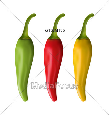 Illustration Set Of Colorful Chili Peppers Isolated On White Background - Vector Stock Photo