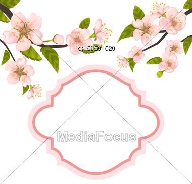 Illustration Spring Elegant Card With Blossoming Tree Branches - Vector Stock Photo