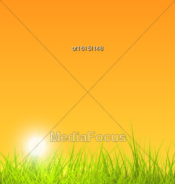 Illustration Summer Nature Background With Grass, Sunset - Vector Stock Photo